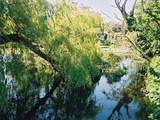 Mystic Pond History