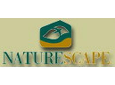 CONSERVATION – Naturescape